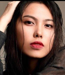Jia model