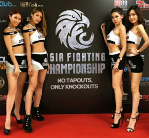asia fighting championship models